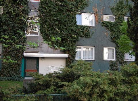 Koepenickerstrkreuzberggreenivycoveredbuilding