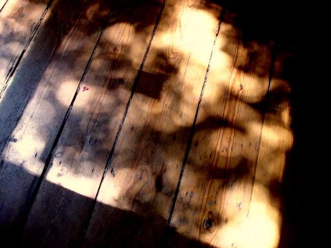 Broadwoodenfloorboardsdappledwithsunlightthroughtreesflickeringwildly2