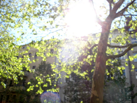 Skytreesunfirstdaysummerberlin