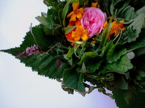 Teabouquetfreshherbsflowersteestraussmarkt