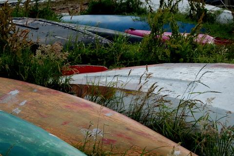 Findhornbayscotlandmorayhighlandsboatbackscolorfulsummer