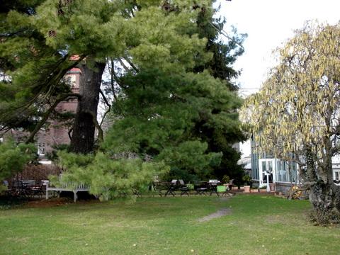 Koniglichegartenakademieberlingardencenterdahlem