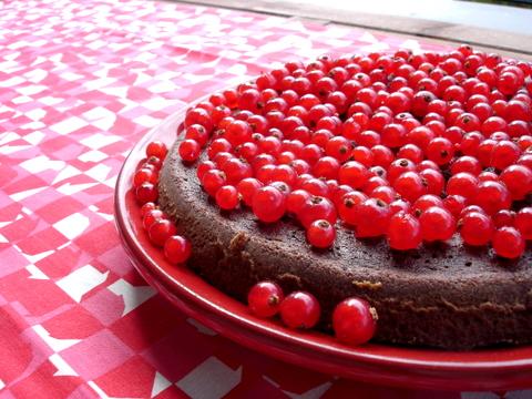 Redcurrantchocolatecake