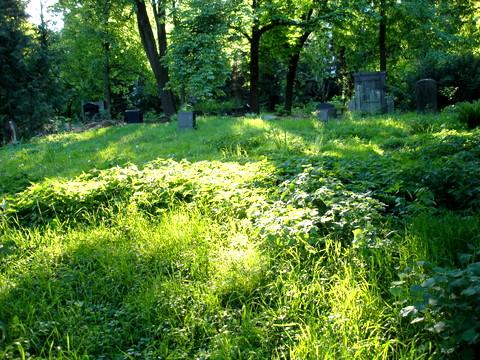 Cemeterywinsstrasseheinrichrollerstrasseberlin
