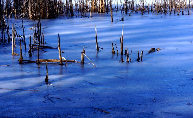 Frozenlakegrunewald2