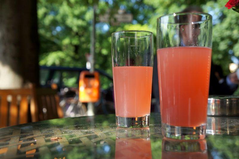 Sparkling-rhubarb-juice