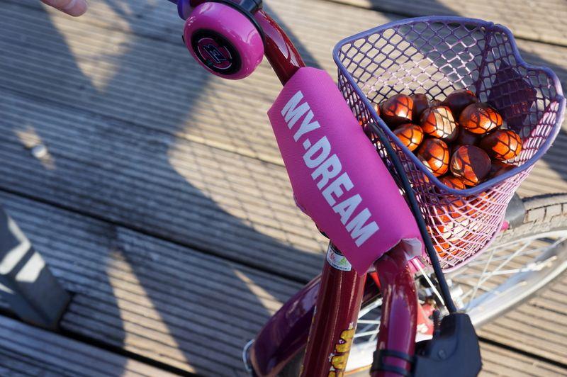 6-bike-basket-chestnuts
