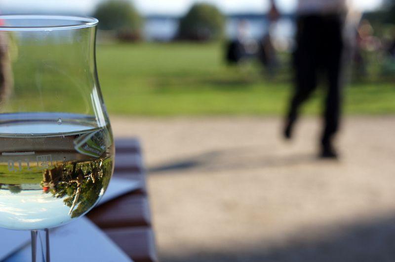 5-wine-waiter-lawn-lake