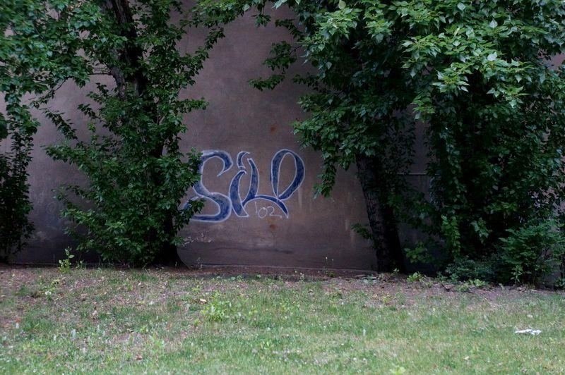 Berlin-walk-1