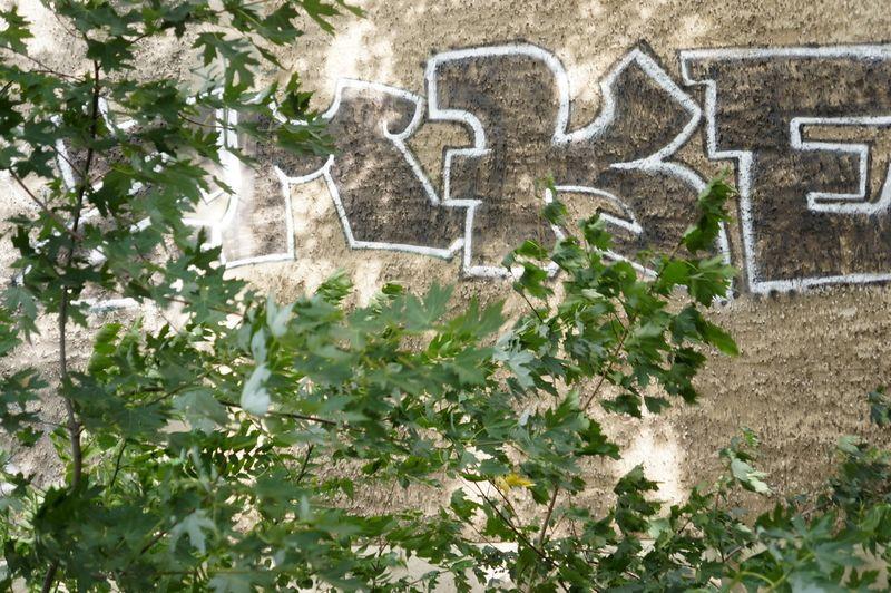 3-little-wood-garden-berlin