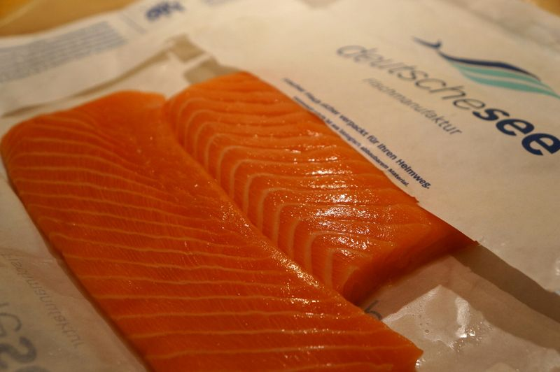 Fresh-salmon-deutsche-see