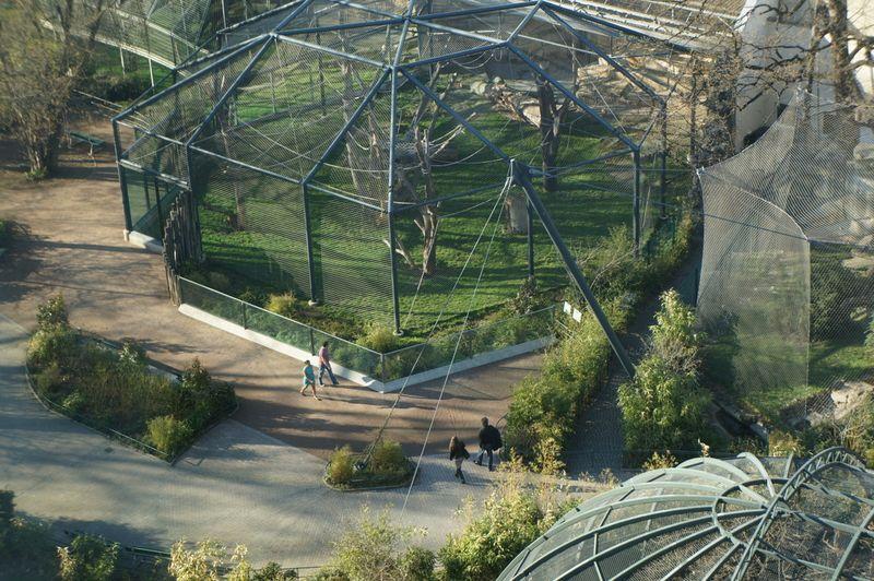 Monkey-bar-view-zoo
