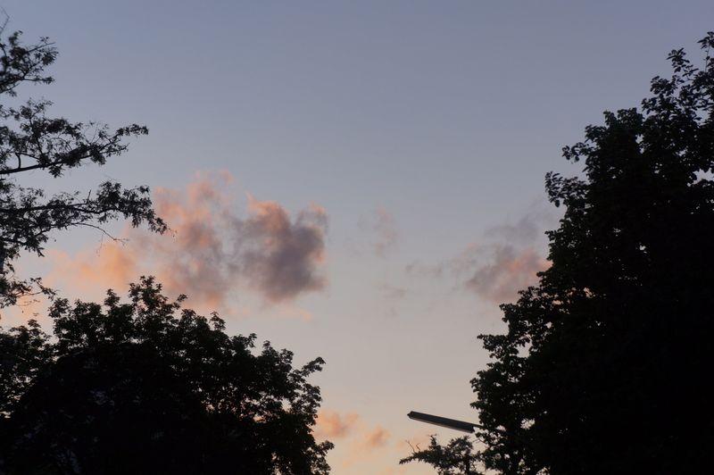 Sky-berlin-dusk