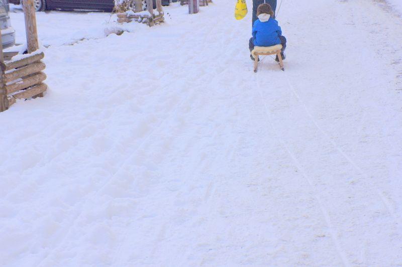 6-sleigh-sled-berlin-street