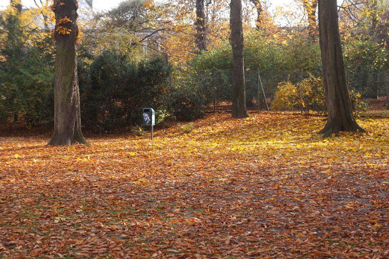 October-berlin-park