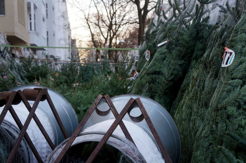 Christmas-trees-sale-berlin